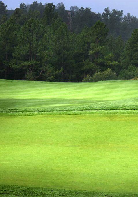 golf-parcours